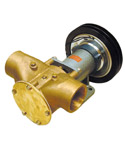Johnson Clutch Pump